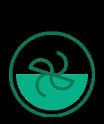 Extractor de nutrenti Nutribullet (Negru)